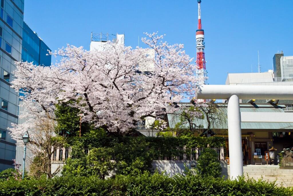 (写真)境内、東京タワーを背後に臨む