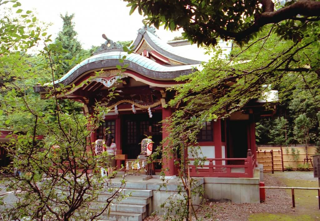 (写真)緑豊かな社殿