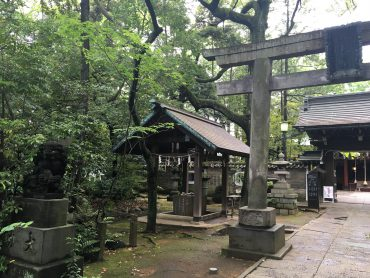 What are Omikuji and Ema?