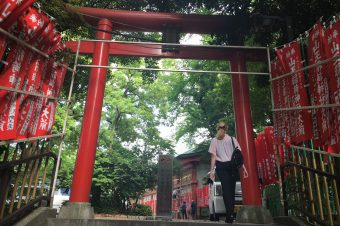 What are Torii Gates?